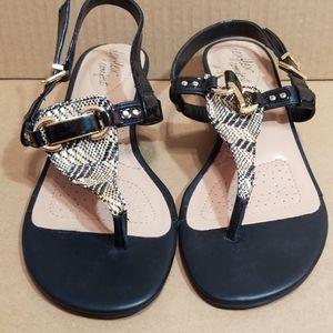 🆕️🦃B1G1🦃DexFlex Comfort Sandals